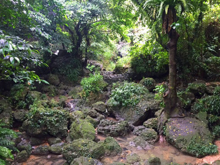 沖縄201604散策3_20