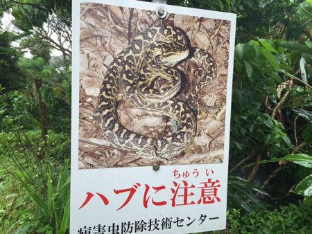 沖縄201604散策3_07