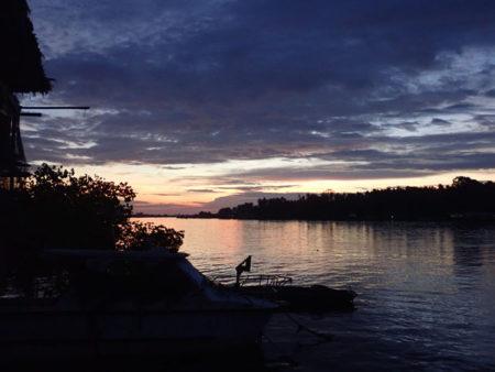 フィリピン近辺の備忘録(自然と野食偏)